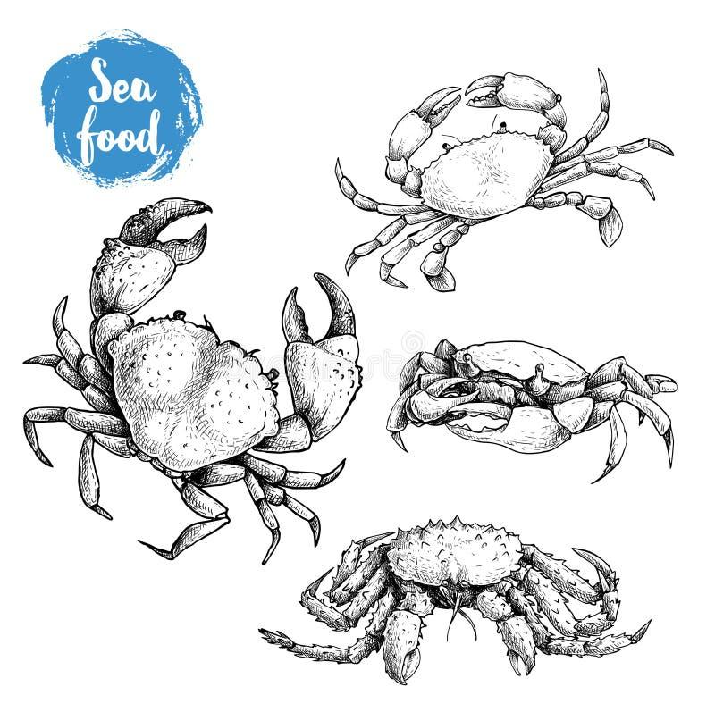 Krabban skissar uppsättningen Hand dragen samling av skaldjur klar vektor för nedladdningillustrationbild stock illustrationer