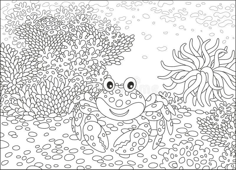 Krabbe und Korallen stock abbildung