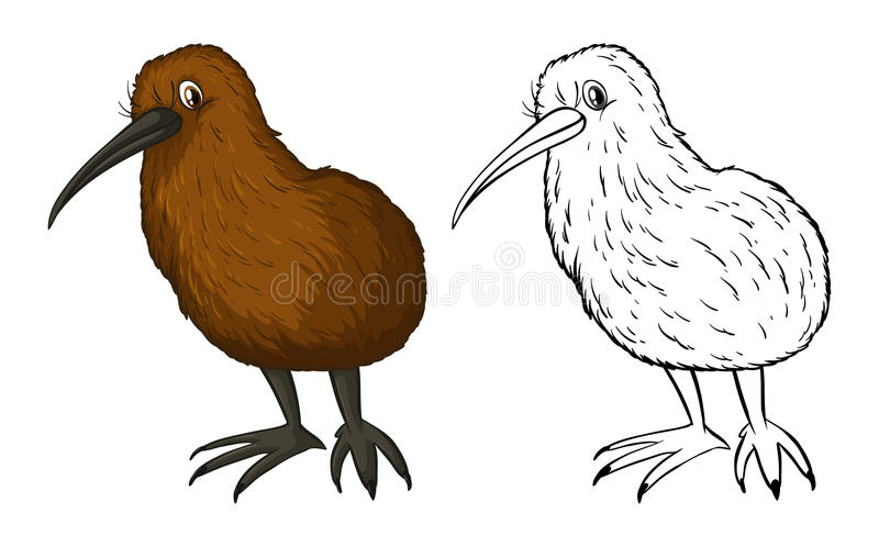 Krabbeldier voor kiwivogel stock illustratie