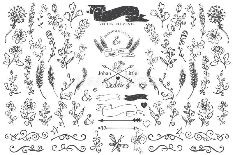 Krabbelgrenzen, linten, bloemendecorelement voor vector illustratie