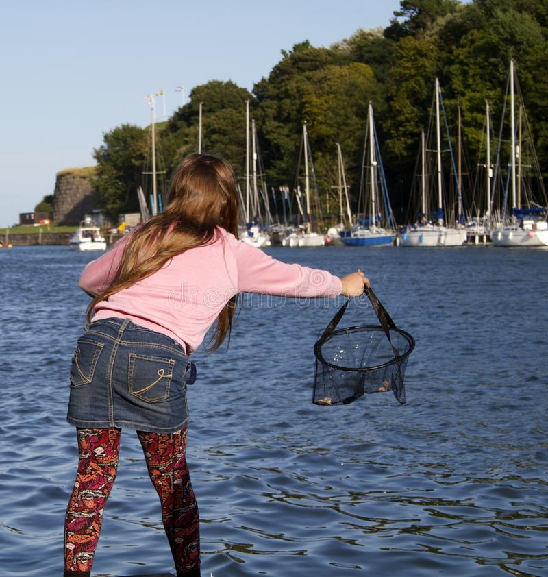 Krabbenfutter in Weymouth stockbilder