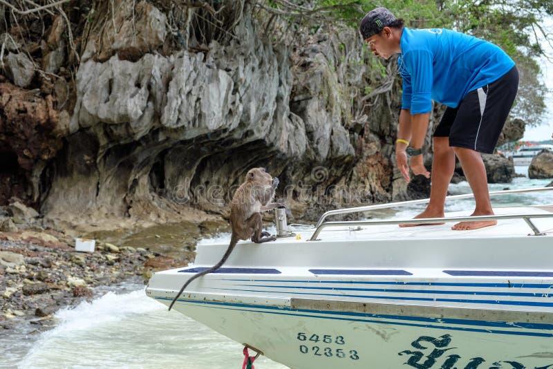 Krabi, Thailand - 05 April 2017: De mensengids verdrijft aap op snelheidsrondvaart stock foto's
