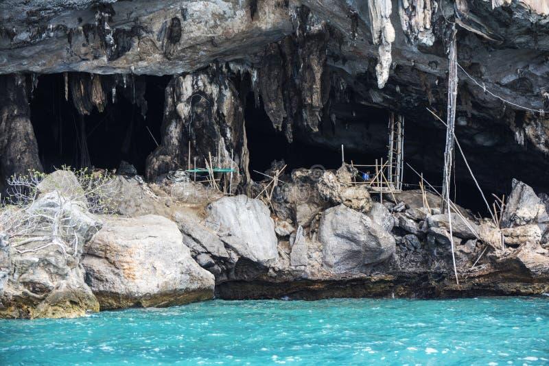 Krabi Thailand - kan 22, 2016: Viking grotta var fågelbon samlas Phi-Phi Leh ö i Krabi, maya, ö, Th fotografering för bildbyråer