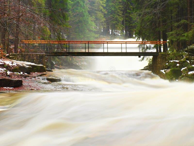 Kracht van Aard Reusachtige stroom van het meeslepen van watermassa's onder kleine voetgangersbrug Hoge cascade in bos royalty-vrije stock afbeelding