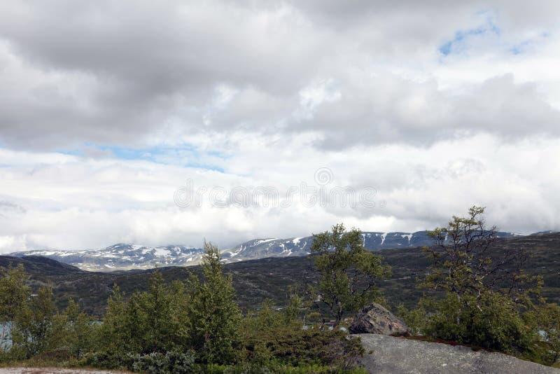 Krachtig stormend weer op Weg in Stormachtig boslandschap stock foto's