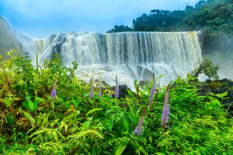 Krachtig van Sae Pong Lai-waterval in Zuidelijk Laos stock afbeelding