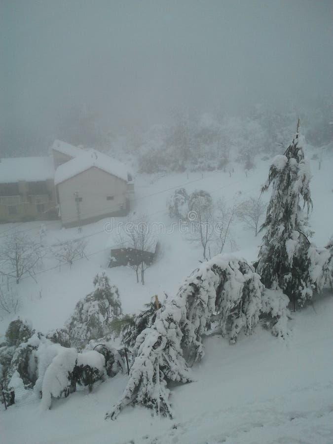 Krachtige en mooie sneeuw - ALGERIJE royalty-vrije stock afbeeldingen