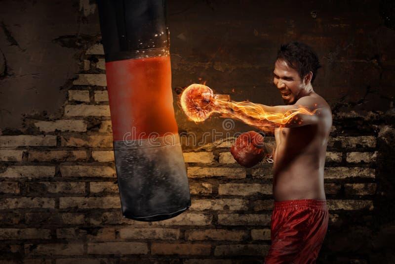 Kraftig asiatisk boxaremanutbildning med att stansa påsen arkivbilder