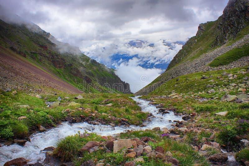 Kraftig ström av bergfloden som kör ner dalen royaltyfri foto