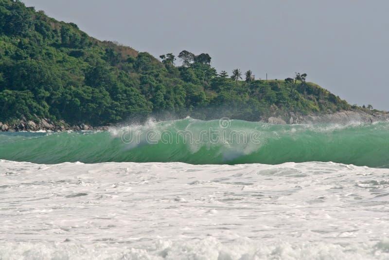 kraftiga tropiska waves royaltyfri foto