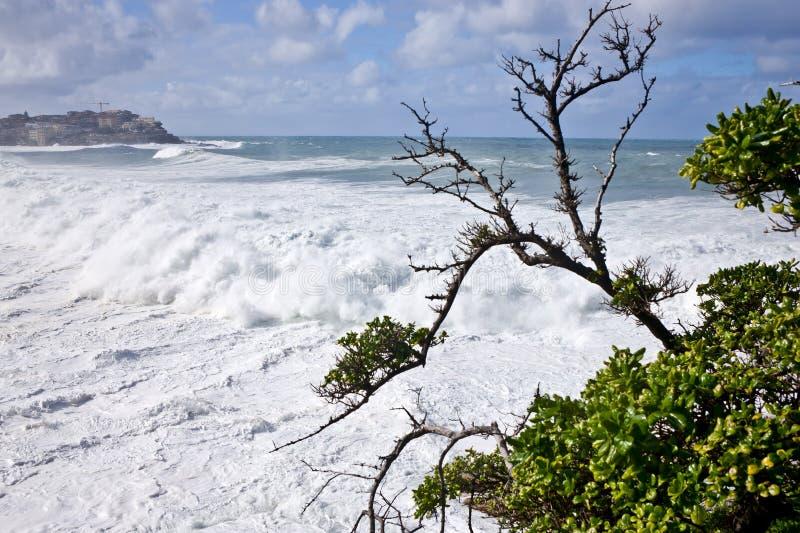 Kraftiga vågor som ashore springer royaltyfria bilder