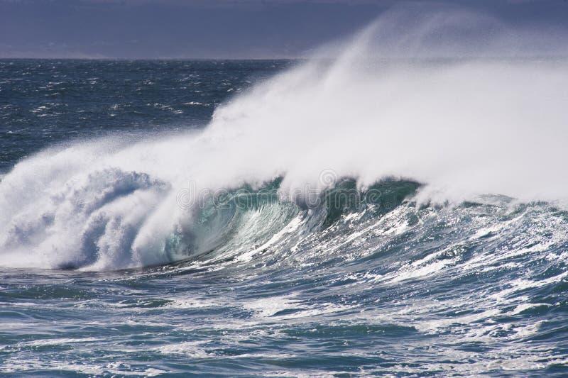 kraftiga waves arkivfoto
