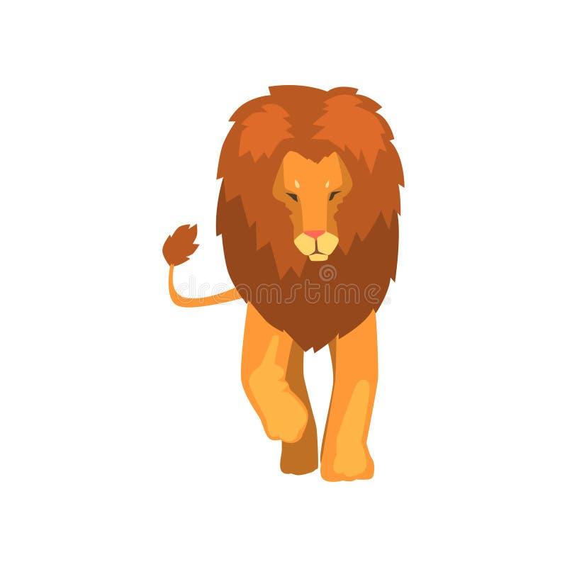 Kraftigt lejon, lös framdel för rov- djur, siktsvektorillustration på en vit bakgrund royaltyfri illustrationer