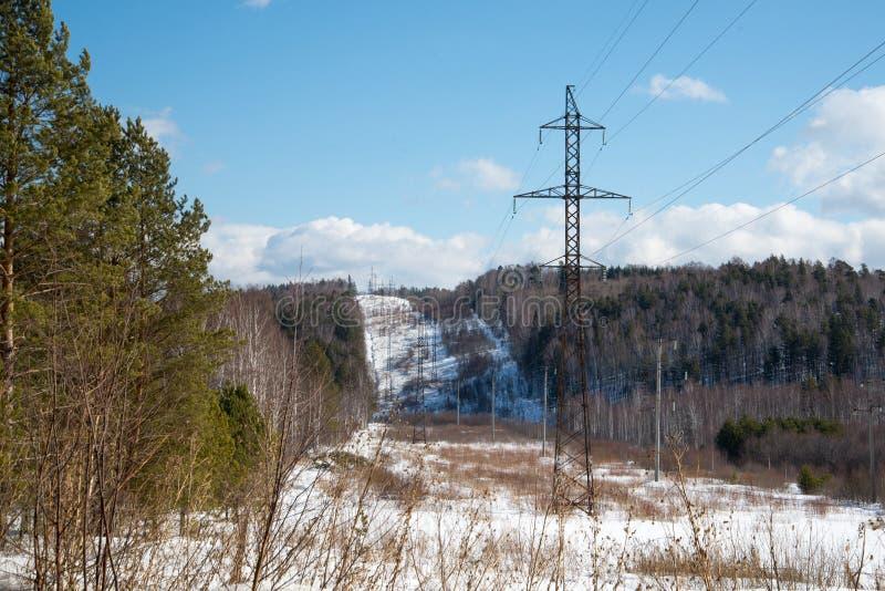 kraftledning i vinterskogen arkivfoto