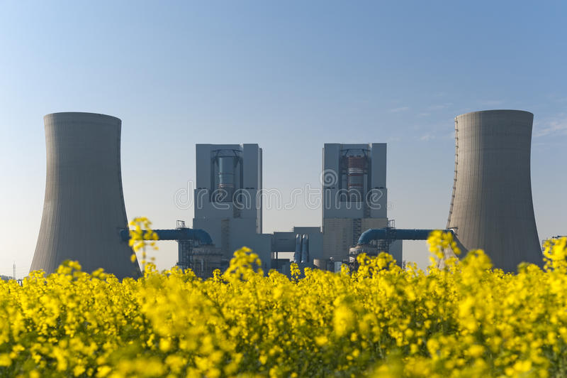 Kraftwerk für Rapsblüte lizenzfreies stockfoto