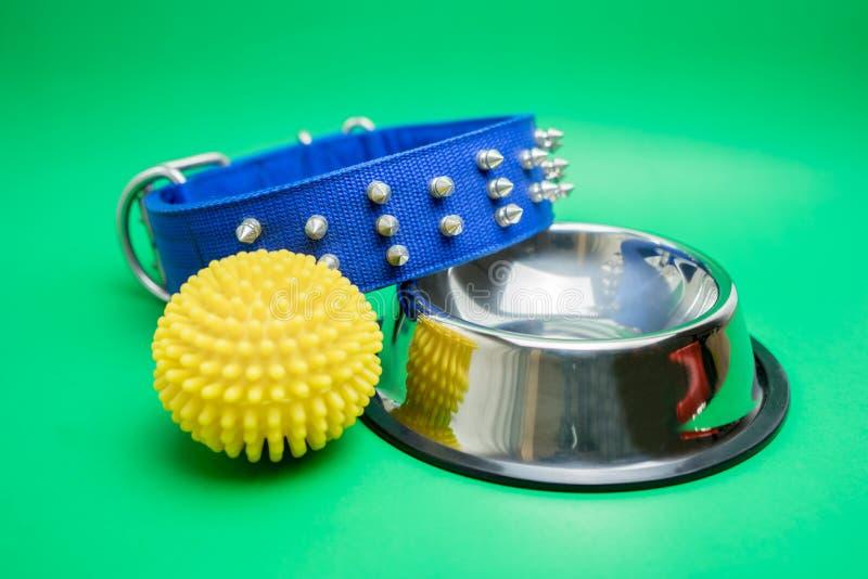 Kragen, rostfreie Schüssel und Gummispielzeug für Haustier auf grünem Hintergrund stockbilder