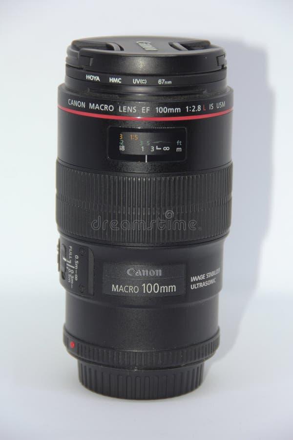 Kragujevac ; La Serbie ; Le 15 septembre 2017 ; La fin vers le haut de la vue du macro lense de Canon 100 millimètres photo stock