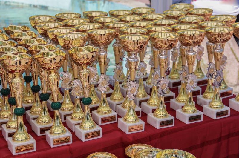 Kragujevac, Serbia - 9 de abril de 2017: El cierre para arriba de diversos trofeos del perro en la tabla C A C I B imagen de archivo