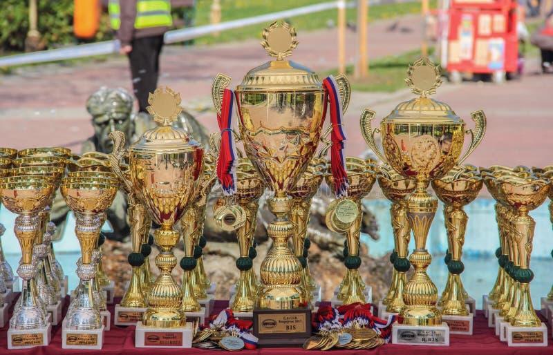 Kragujevac, Serbie - 9 avril 2017 : La fin des trophées de chien avec des médailles sur la table C a C I B photo stock
