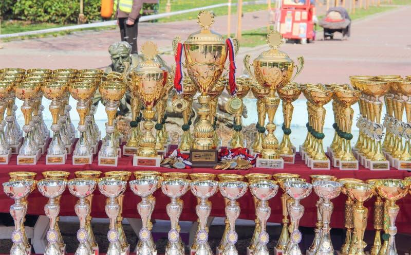 Kragujevac, Serbie - 9 avril 2017 : La fin des trophées et des médailles de chien sur la table C a C I B photo stock