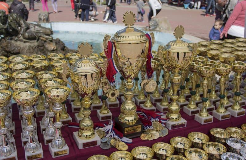Kragujevac Serbien - April 9, 2017: Dog troféer med guld- och silvermedaljer på tabellen C A C I B royaltyfria bilder