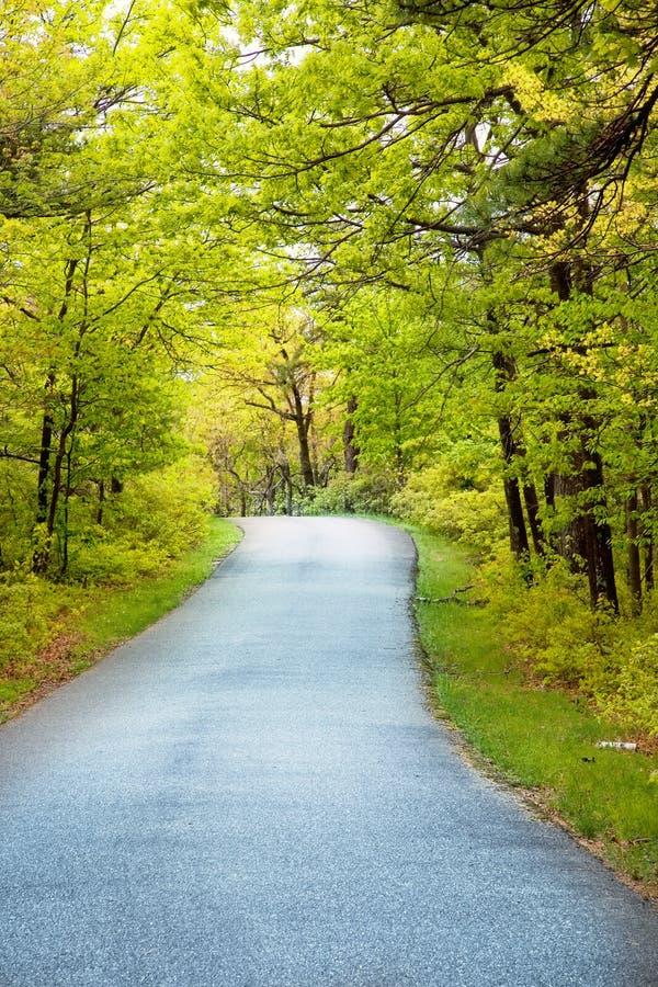 kraj lane zdjęcie royalty free