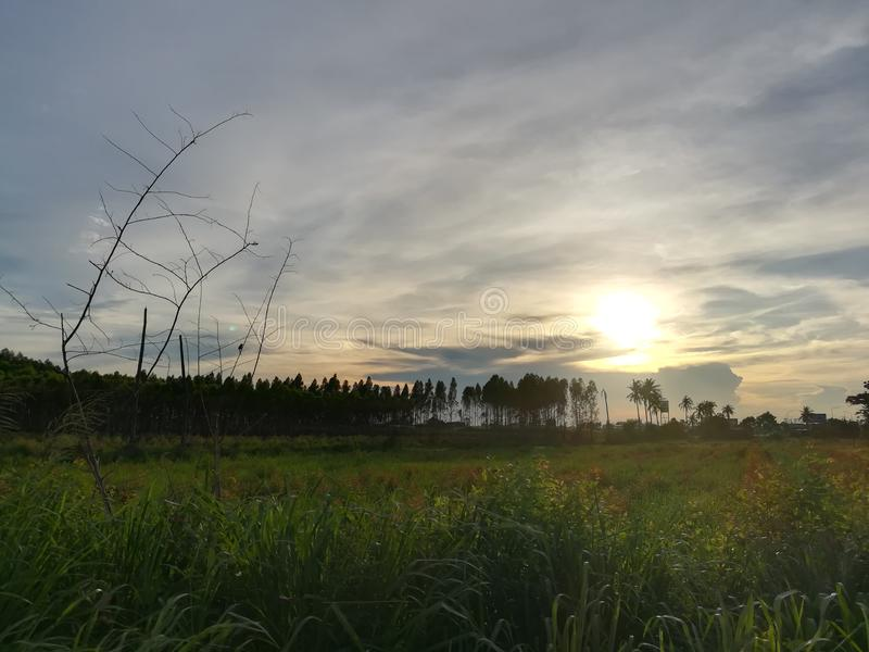 Krajobraz zdjęcie stock