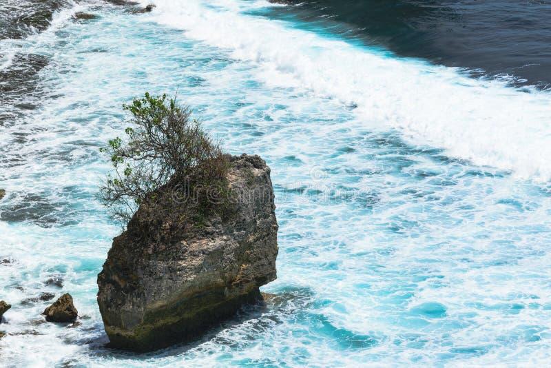 Krajobraz błękitny oceanu indyjskiego domycie i ogromna skała z narastającym drzewem na nim obrazy stock