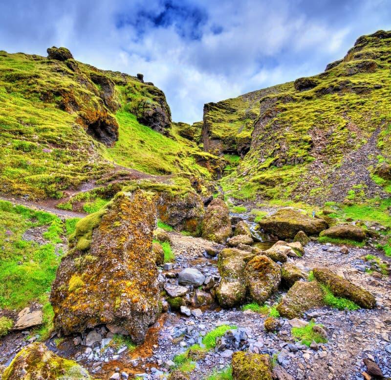Krajobraz blisko Skoga rzeki - Iceland obrazy stock