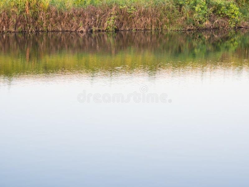 Krajobraz brzeg rzeki zdjęcie royalty free