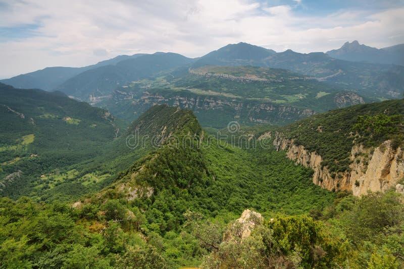 Krajobraz bukowy las zdjęcie royalty free