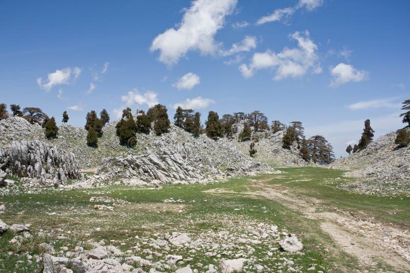 Krajobraz górski. Dolina kamienia. Droga Lycka. Turcja zdjęcia royalty free