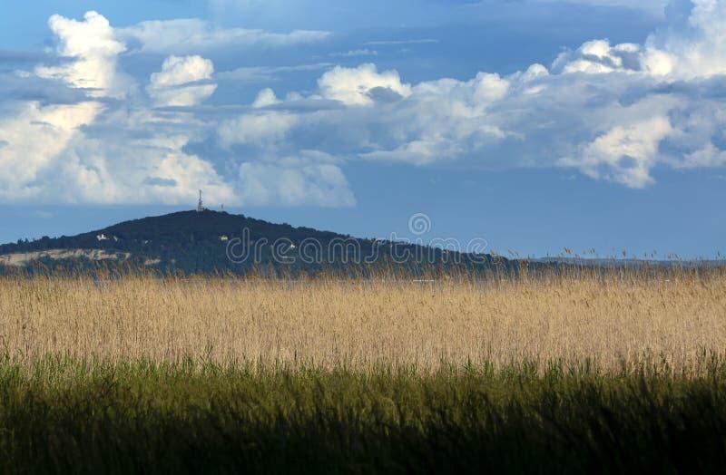 Krajobraz Jeziorny Balaton, W?gry zdjęcie stock