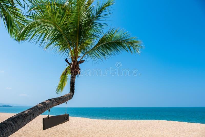 Krajobraz kokosowy drzewko palmowe, Piękna błękitna denna tropikalna plaża zdjęcia stock