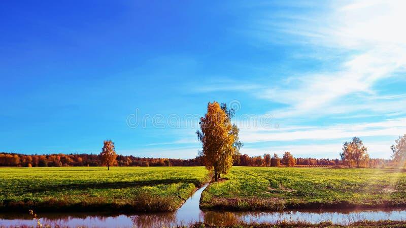 Krajobraz Latvia fotografia stock