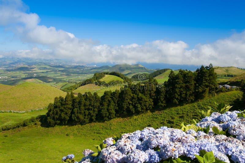 Krajobraz na Sao Miguel, Azores zdjęcie stock