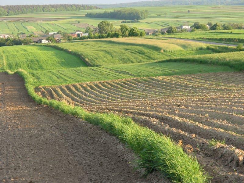 krajobraz nad Poland typowym scenicznym celu zdjęcia royalty free