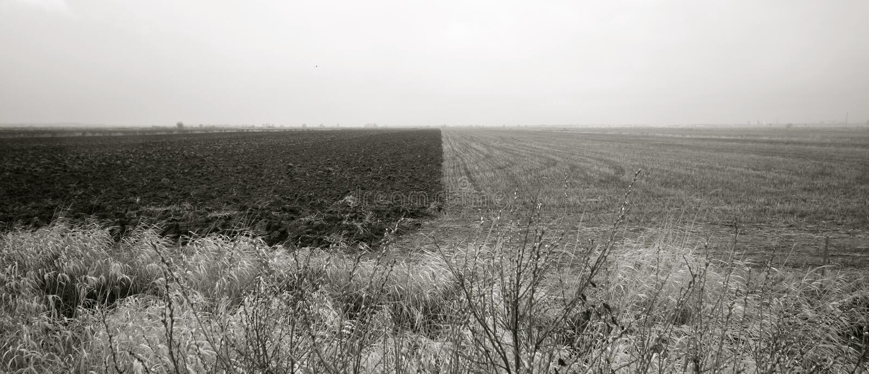 Krajobraz - naturalny kontrast zdjęcie stock