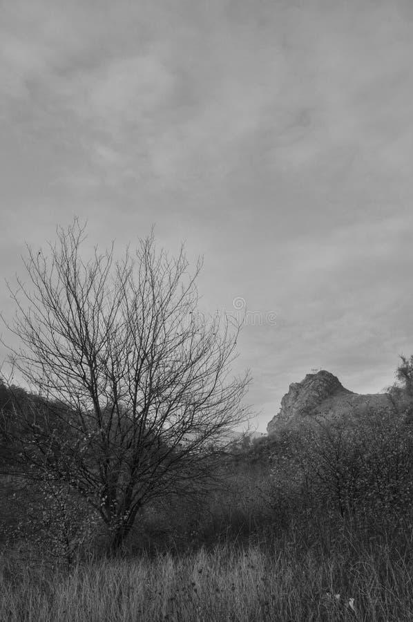 Krajobraz od Araqs doliny fotografia stock