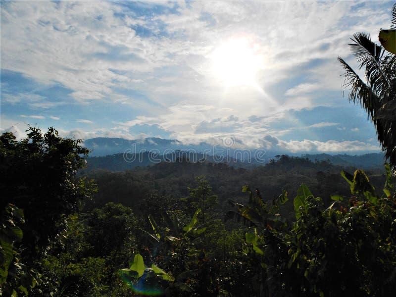 Krajobraz Paisaje naturalny Selva De perú obrazy stock