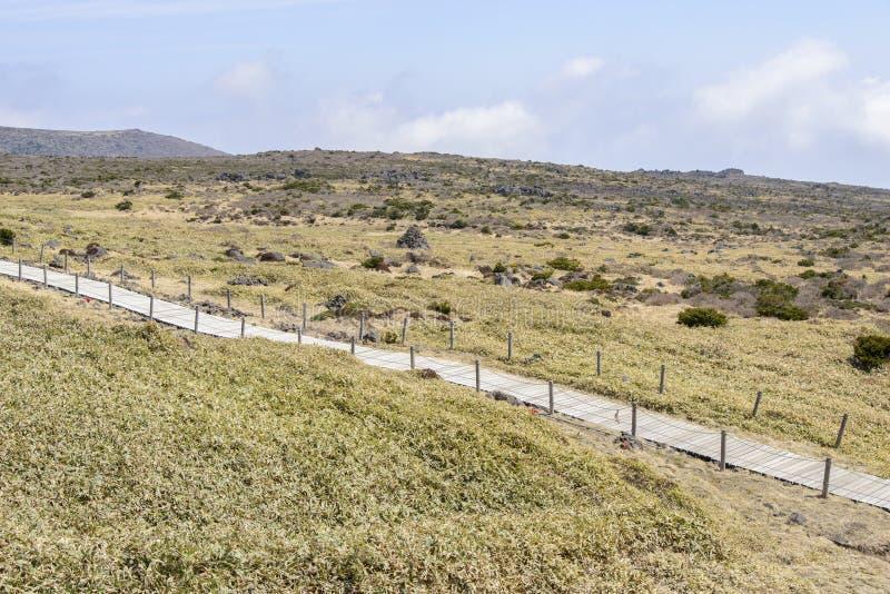 Download Krajobraz Plateau W Hallasan Moutain Obraz Stock - Obraz złożonej z trawy, plateau: 53787281