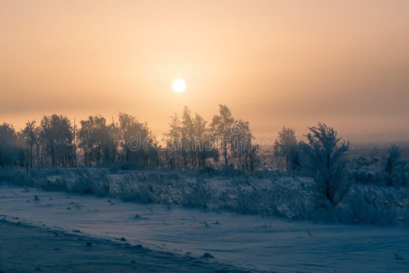 Krajobraz południowi Urals w zimie zdjęcie royalty free