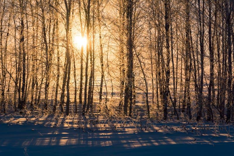 Krajobraz południowi Urals w zimie obraz stock