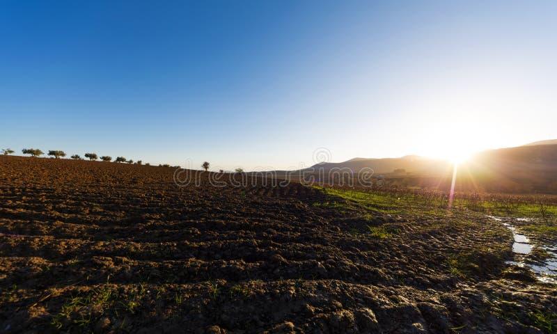 Krajobraz przy równiną Thebes, Grecja zdjęcie stock