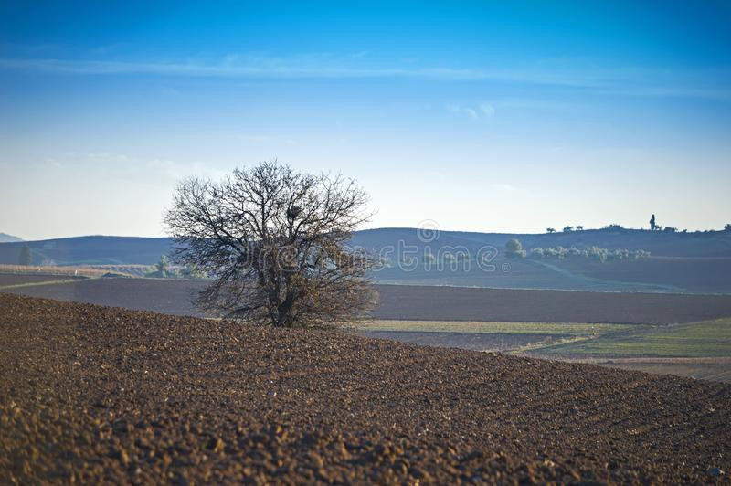 Krajobraz przy równiną Thebes, Grecja obrazy royalty free