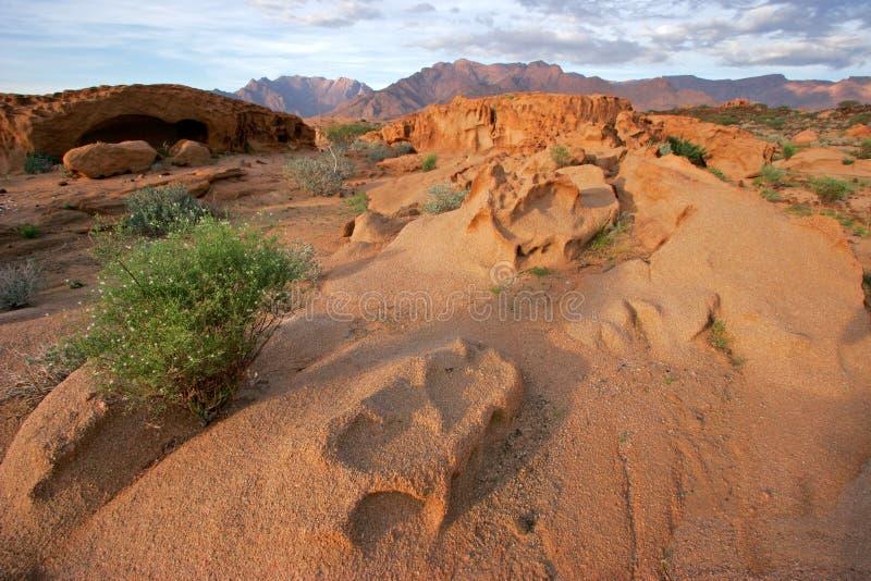 krajobraz pustynny zdjęcie royalty free