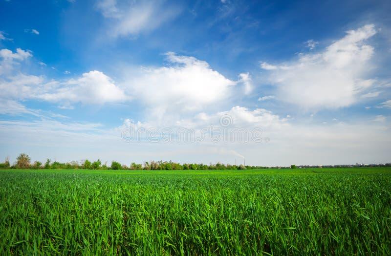Krajobraz robić w dniu piękny zachmurzone niebo obraz royalty free
