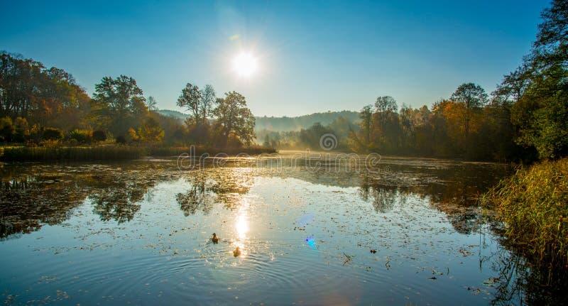 Krajobraz rzeka i las w spadku zdjęcie royalty free