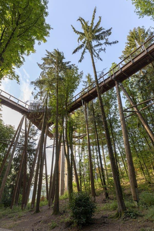 Krajobraz Saarland z treetop ścieżką przy Saar panorami zdjęcie royalty free