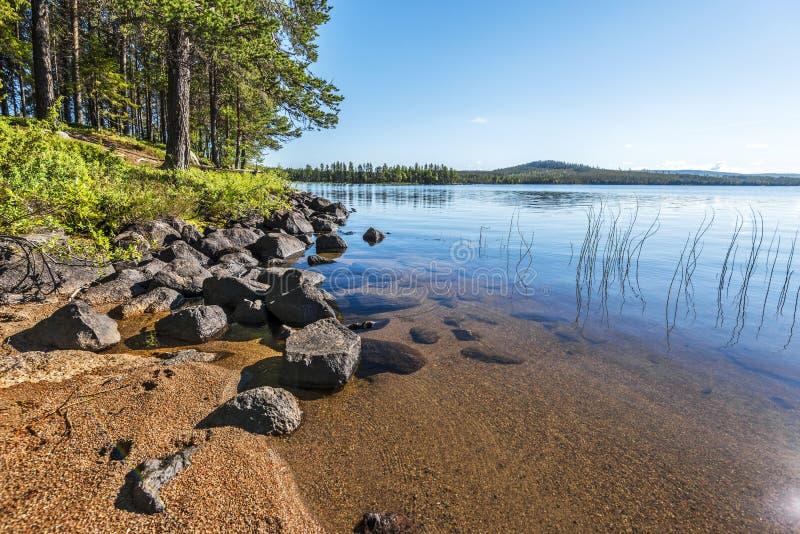 Krajobraz Siebdniesjavrrie jeziorna linia brzegowa w Szwedzkim Lapland Piaskowata plaża z kamieniami jest przy przedpolem sosnowy zdjęcie stock